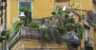 balcony_garden_edited
