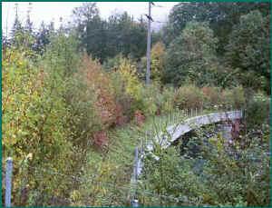 Bro med staket